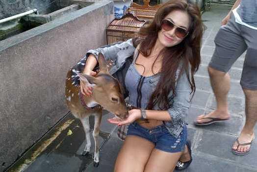 Vanessa VDJ Pecinta Binatang