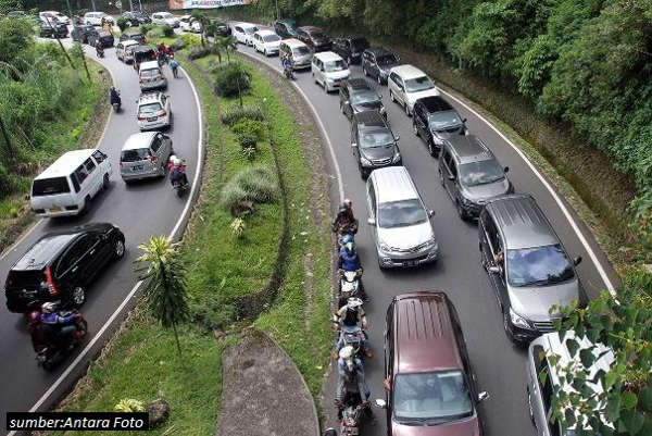 Ini Dia Alasan Kenapa Puncak Bogor Masih Jadi Tujuan Utama Liburan Orang Jakarta